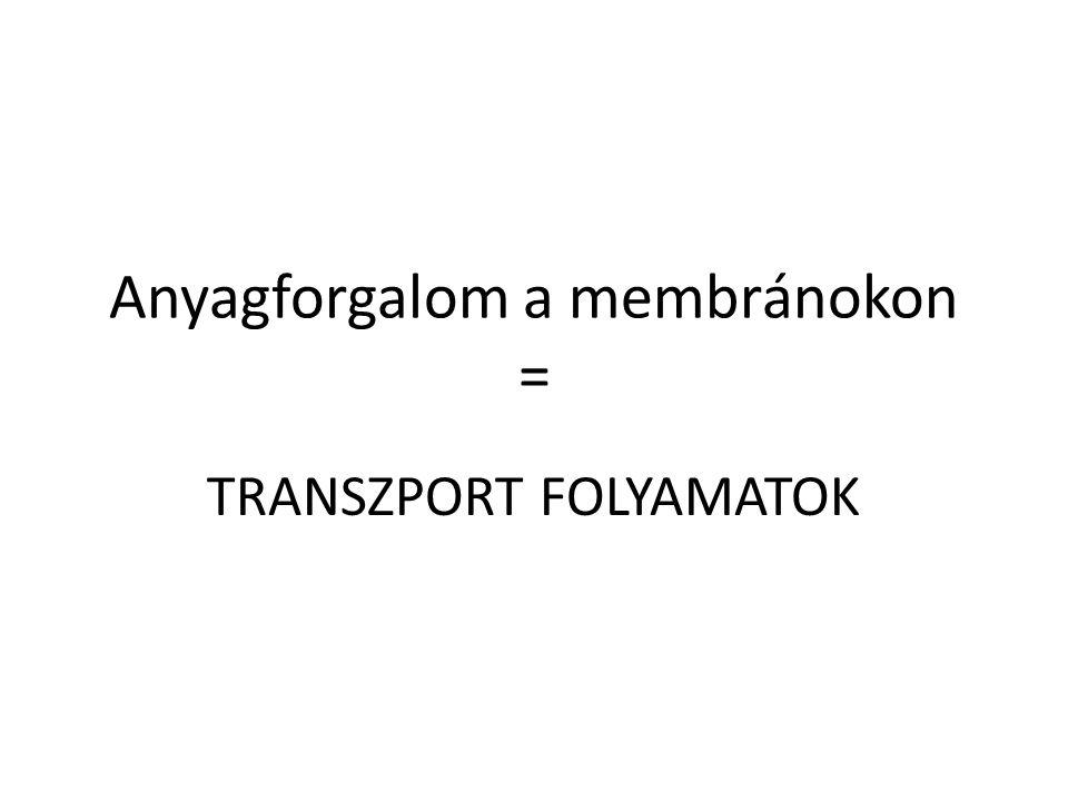 Anyagforgalom a membránokon = TRANSZPORT FOLYAMATOK