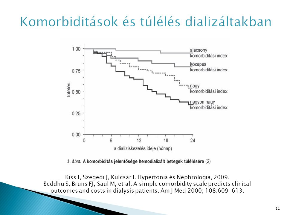 14 Kiss I, Szegedi J, Kulcsár I. Hypertonia és Nephrologia, 2009. Beddhu S, Bruns FJ, Saul M, et al. A simple comorbidity scale predicts clinical outc