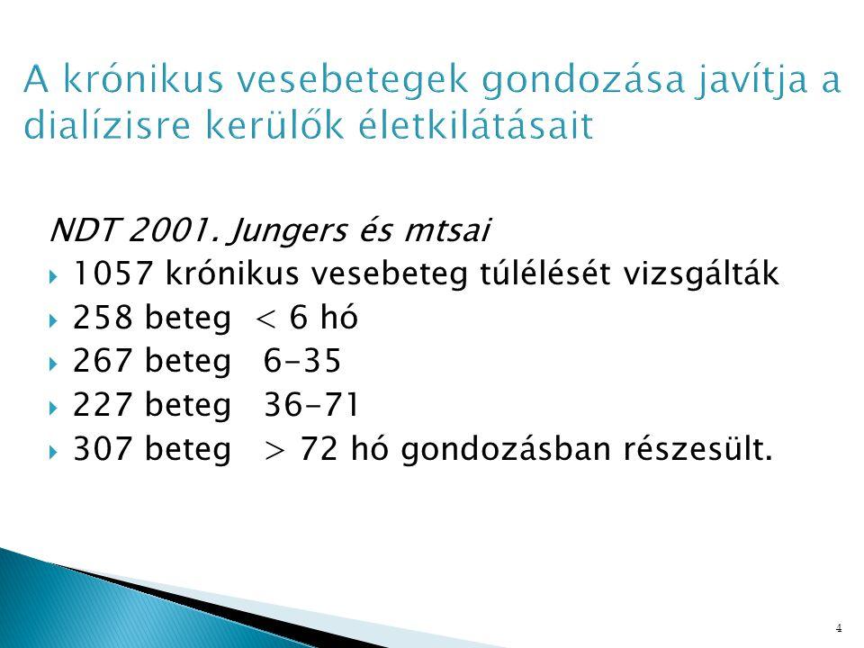 4 NDT 2001.