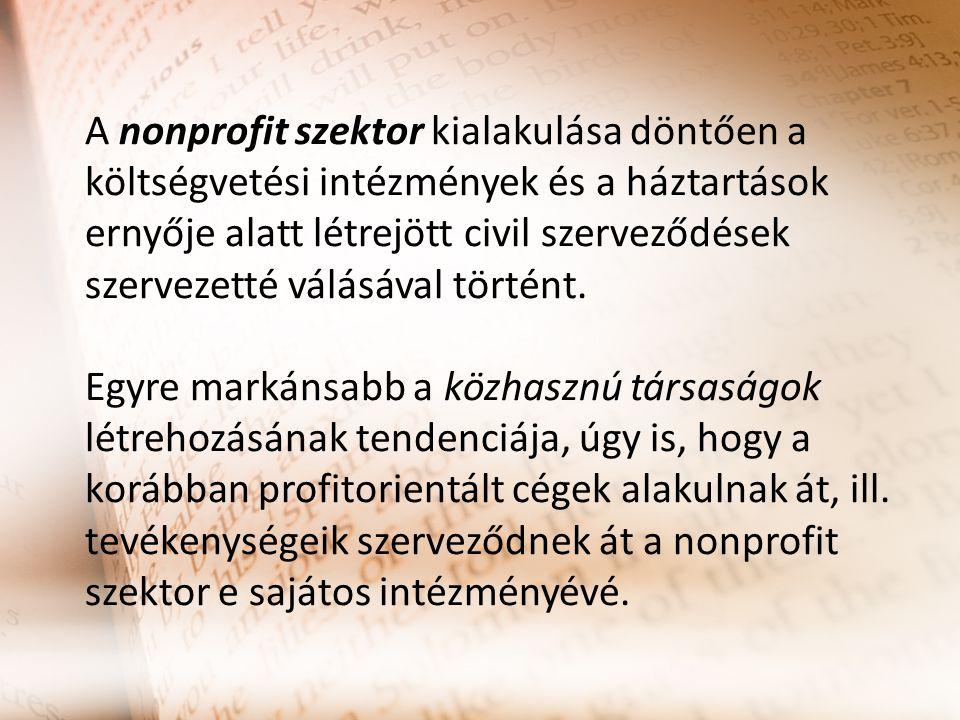 A nonprofit szektor kialakulása döntően a költségvetési intézmények és a háztartások ernyője alatt létrejött civil szerveződések szervezetté válásával