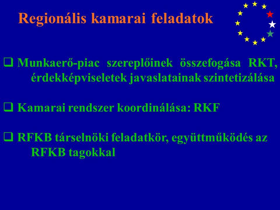 Regionális kamarai feladatok  Munkaerő-piac szereplőinek összefogása RKT, érdekképviseletek javaslatainak szintetizálása  Kamarai rendszer koordinálása: RKF  RFKB társelnöki feladatkör, együttműködés az RFKB tagokkal