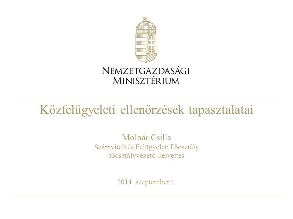 Közfelügyeleti ellenőrzések tapasztalatai Molnár Csilla Számviteli és Felügyeleti Főosztály főosztályvezető-helyettes 2014. szeptember 4.
