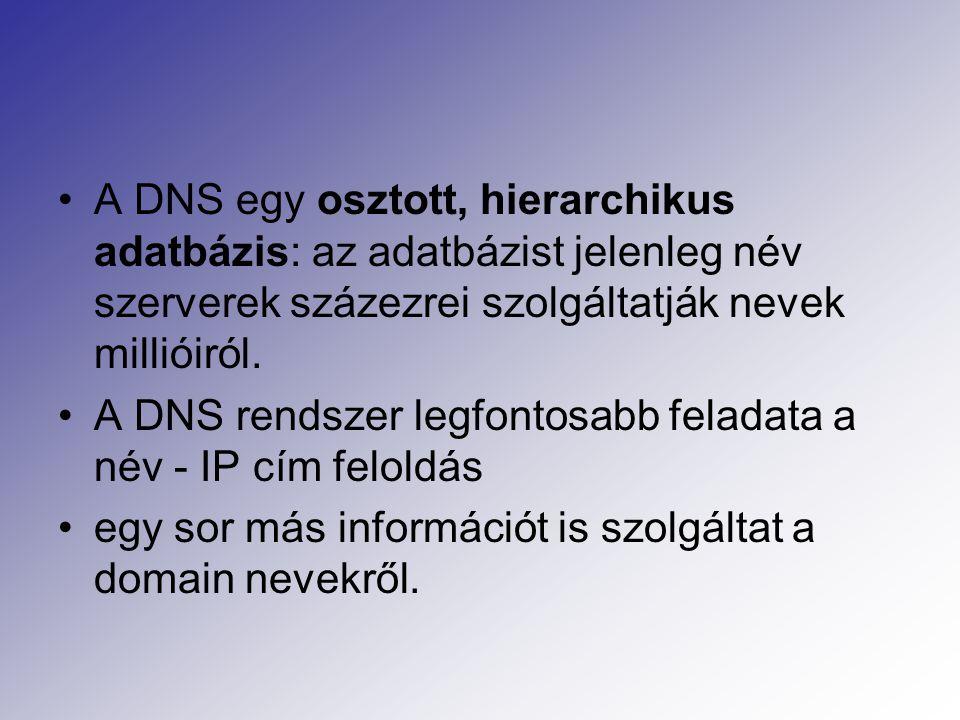 A DNS egy osztott, hierarchikus adatbázis: az adatbázist jelenleg név szerverek százezrei szolgáltatják nevek millióiról.