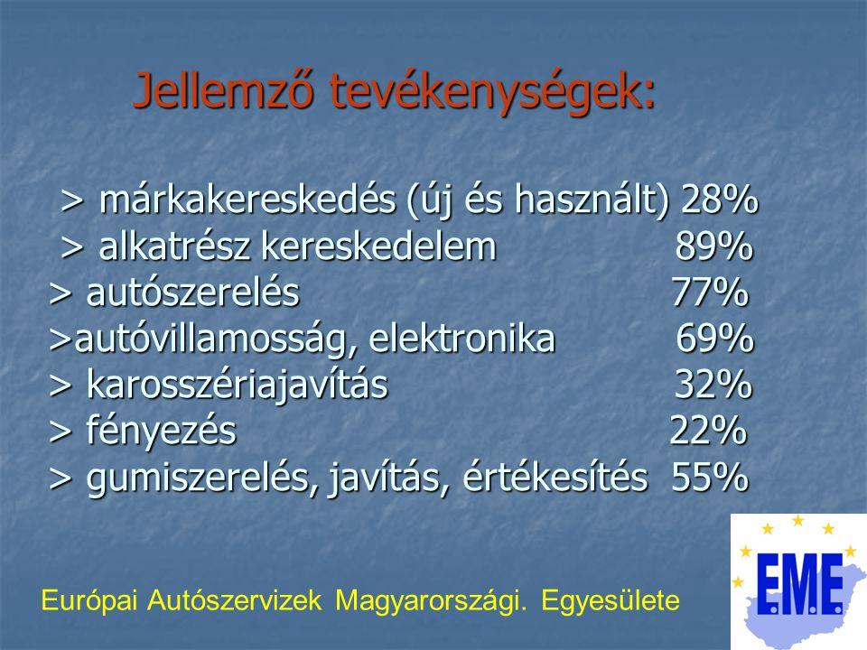 Jellemző tevékenységek: > márkakereskedés (új és használt) 28% > alkatrész kereskedelem 89% > autószerelés 77% >autóvillamosság, elektronika 69% > karosszériajavítás 32% > fényezés 22% > gumiszerelés, javítás, értékesítés 55% Európai Autószervizek Magyarországi.