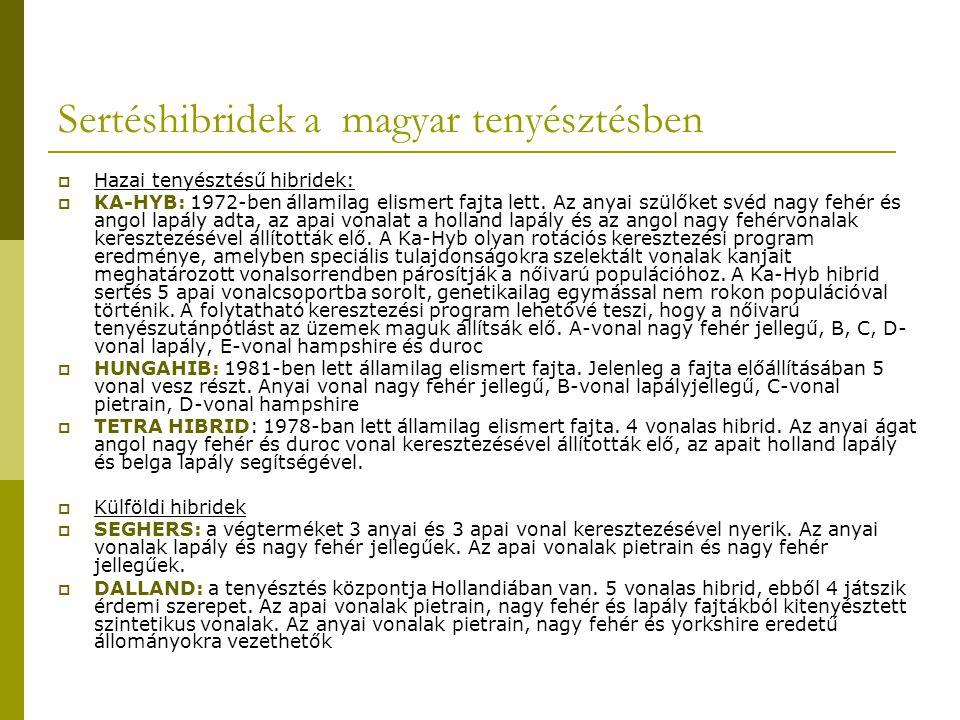 Sertéshibridek a magyar tenyésztésben  Hazai tenyésztésű hibridek:  KA-HYB: 1972-ben államilag elismert fajta lett.