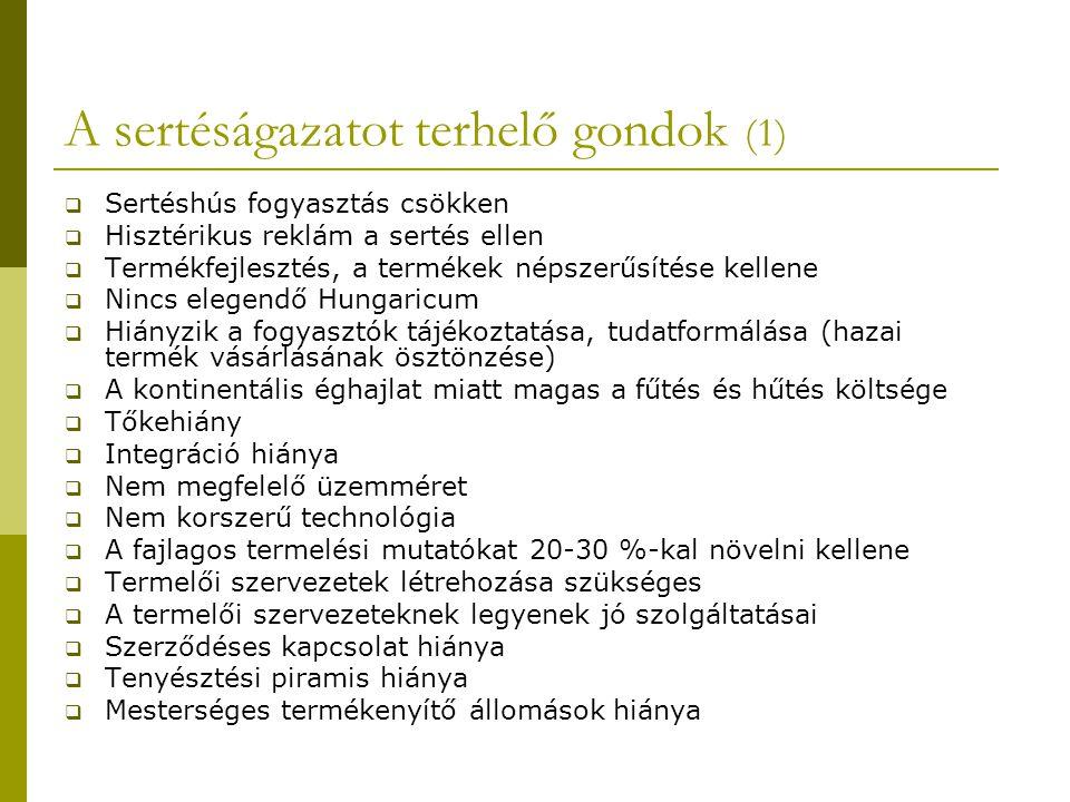 A sertéságazatot terhelő gondok (1)  Sertéshús fogyasztás csökken  Hisztérikus reklám a sertés ellen  Termékfejlesztés, a termékek népszerűsítése kellene  Nincs elegendő Hungaricum  Hiányzik a fogyasztók tájékoztatása, tudatformálása (hazai termék vásárlásának ösztönzése)  A kontinentális éghajlat miatt magas a fűtés és hűtés költsége  Tőkehiány  Integráció hiánya  Nem megfelelő üzemméret  Nem korszerű technológia  A fajlagos termelési mutatókat 20-30 %-kal növelni kellene  Termelői szervezetek létrehozása szükséges  A termelői szervezeteknek legyenek jó szolgáltatásai  Szerződéses kapcsolat hiánya  Tenyésztési piramis hiánya  Mesterséges termékenyítő állomások hiánya