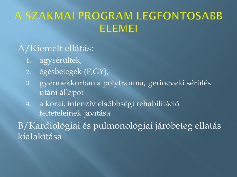 A/Kiemelt ellátás: 1. agysérültek, 2. égésbetegek (F,GY), 3.