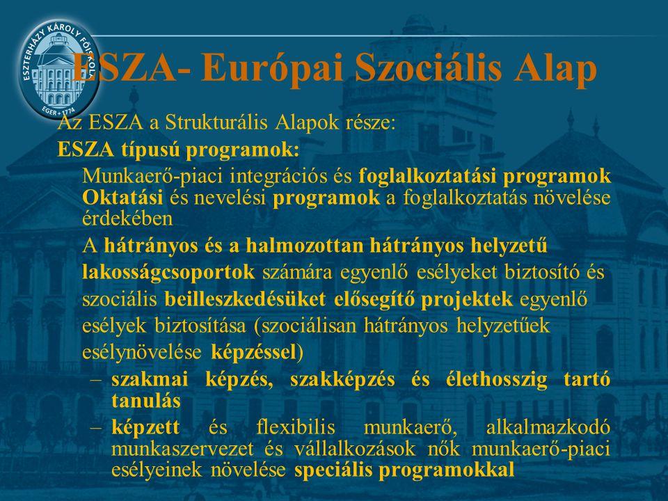 ESZA- Európai Szociális Alap Az ESZA a Strukturális Alapok része: ESZA típusú programok: Munkaerő-piaci integrációs és foglalkoztatási programok Oktat