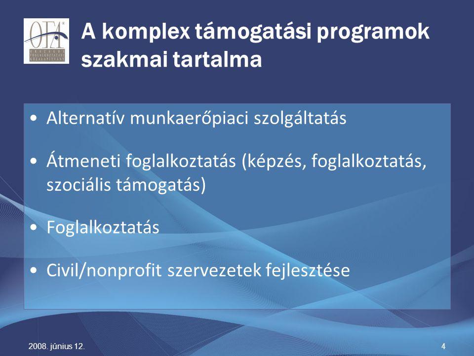 2008. június 12.4 A komplex támogatási programok szakmai tartalma Alternatív munkaerőpiaci szolgáltatás Átmeneti foglalkoztatás (képzés, foglalkoztatá