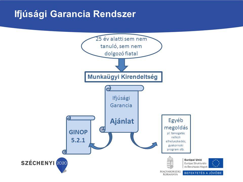 Ifjúsági Garancia munkaerő-piaci program (GINOP 5.2.1-14) A GINOP 5.2.1 program támogatási elemei: Képzés támogatása: tanfolyami díj, keresetpótló juttatás, útiköltség térítés, alkalmassági vizsgálatok.