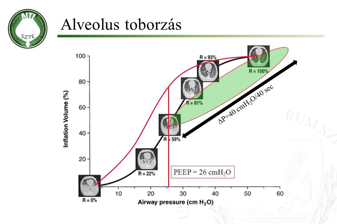 Alveolus toborzás  P=40 cmH 2 O/40 sec PEEP = 26 cmH 2 O