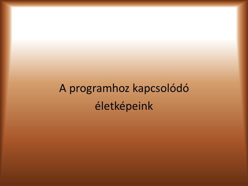 A programhoz kapcsolódó életképeink