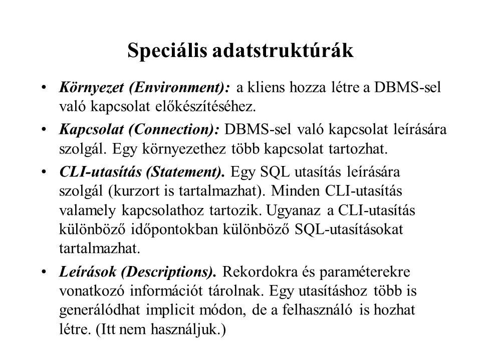 Speciális adatstruktúrák Környezet (Environment): a kliens hozza létre a DBMS-sel való kapcsolat előkészítéséhez.