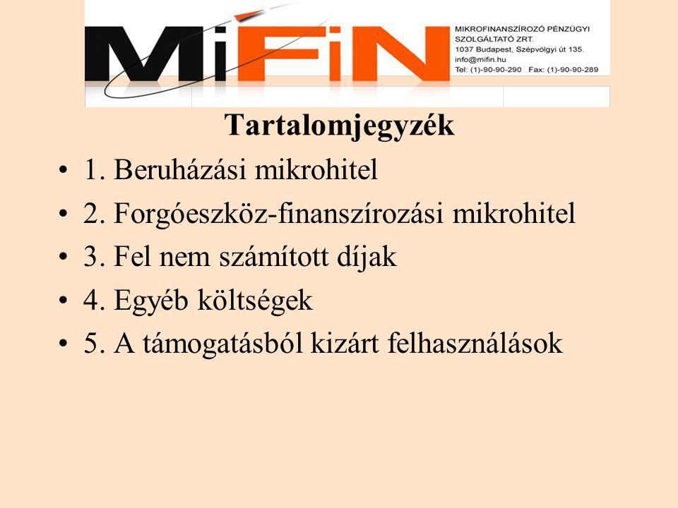 Tartalomjegyzék 1.Beruházási mikrohitel 2. Forgóeszköz-finanszírozási mikrohitel 3.