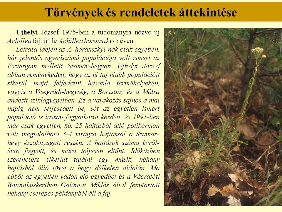 Törvények és rendeletek áttekintése Ujhelyi József 1975-ben a tudományra nézve új Achillea fajt írt le Achillea horanszkyi néven. Leírása idején az A.