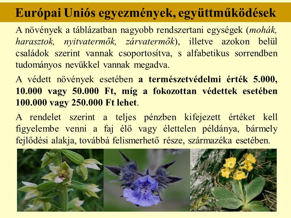 Európai Uniós egyezmények, együttműködések A növények a táblázatban nagyobb rendszertani egységek (mohák, harasztok, nyitvatermők, zárvatermők), illet