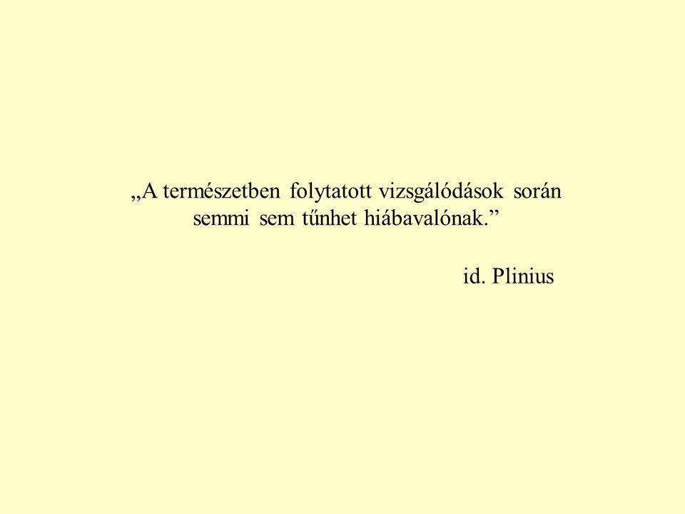 """id. Plinius """"A természetben folytatott vizsgálódások során semmi sem tűnhet hiábavalónak."""""""
