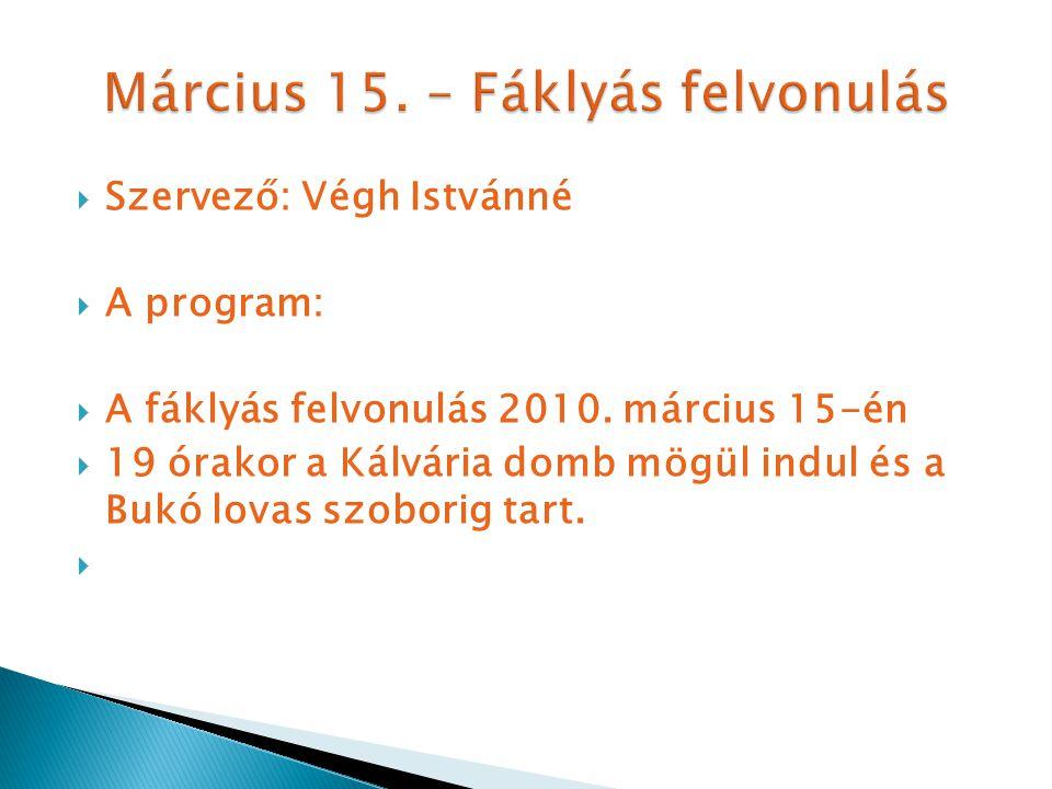  Szervező: Végh Istvánné  A program:  A fáklyás felvonulás 2010.