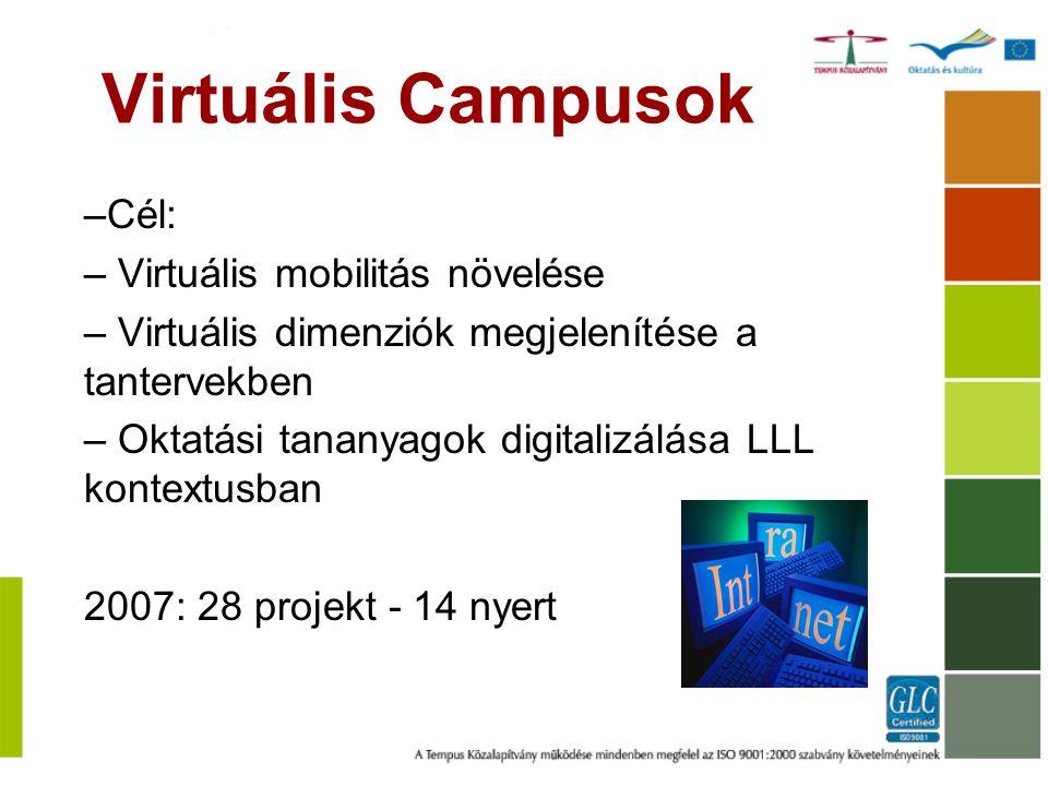 Virtuális Campusok –Cél: – Virtuális mobilitás növelése – Virtuális dimenziók megjelenítése a tantervekben – Oktatási tananyagok digitalizálása LLL ko