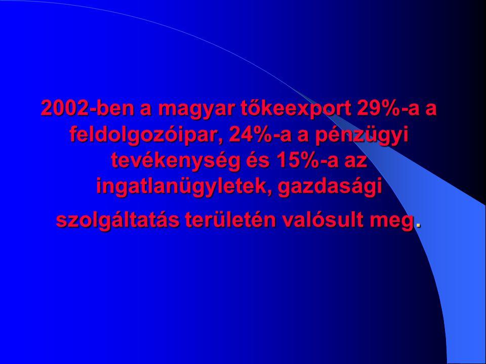 2002-ben a magyar tőkeexport 29%-a a feldolgozóipar, 24%-a a pénzügyi tevékenység és 15%-a az ingatlanügyletek, gazdasági szolgáltatás területén valósult meg.