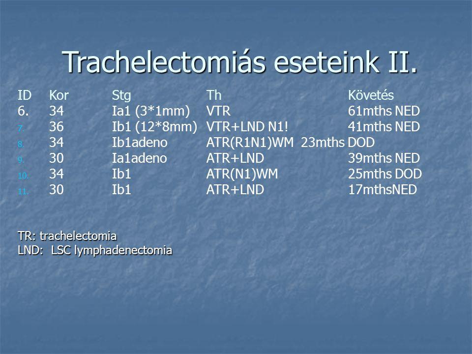 Trachelectomiás eseteink I. IDKorStd ThKövetés 1. 31Ib1 (12*3mm)VTR 2x szülés (SC) 2. 28Ia1 (7*2mm)VTR+LND1x szülés (SC) 3. 25Ia2 (7*3mm)VTR+LND1x szü