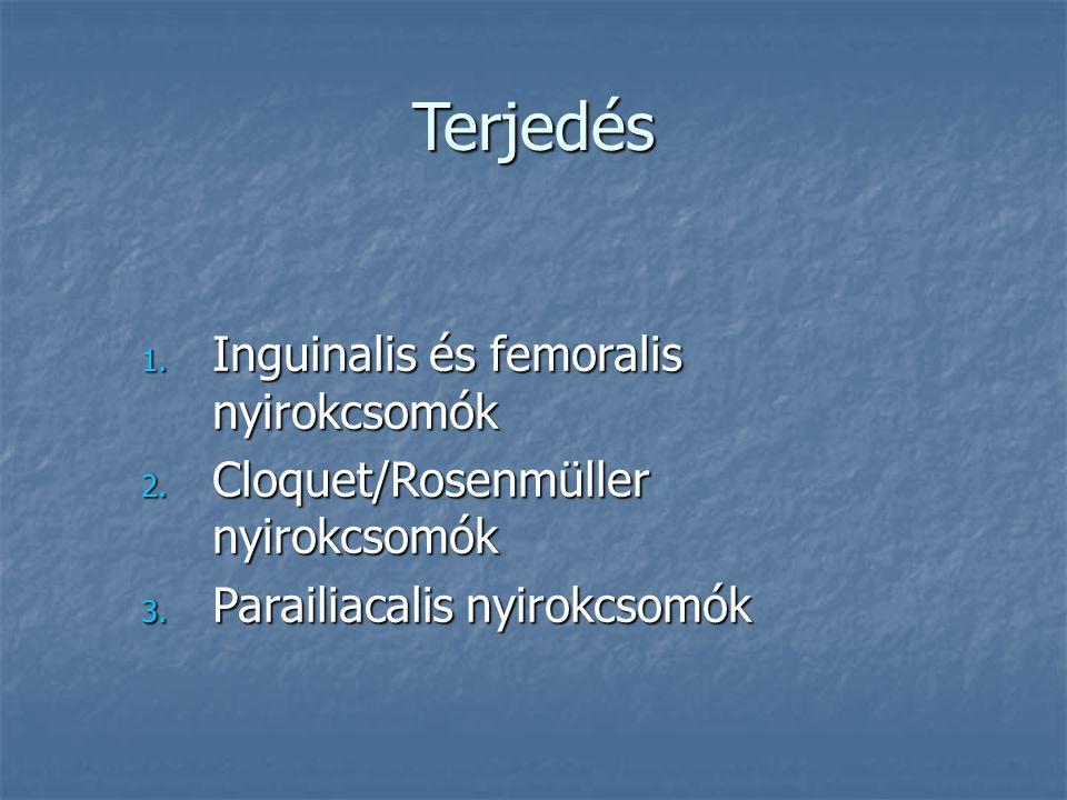 Makroszkópikus megjelenés Superficialis5-15% Superficialis5-15% Exophyticus40% Exophyticus40% Endophyticus45% Endophyticus45%