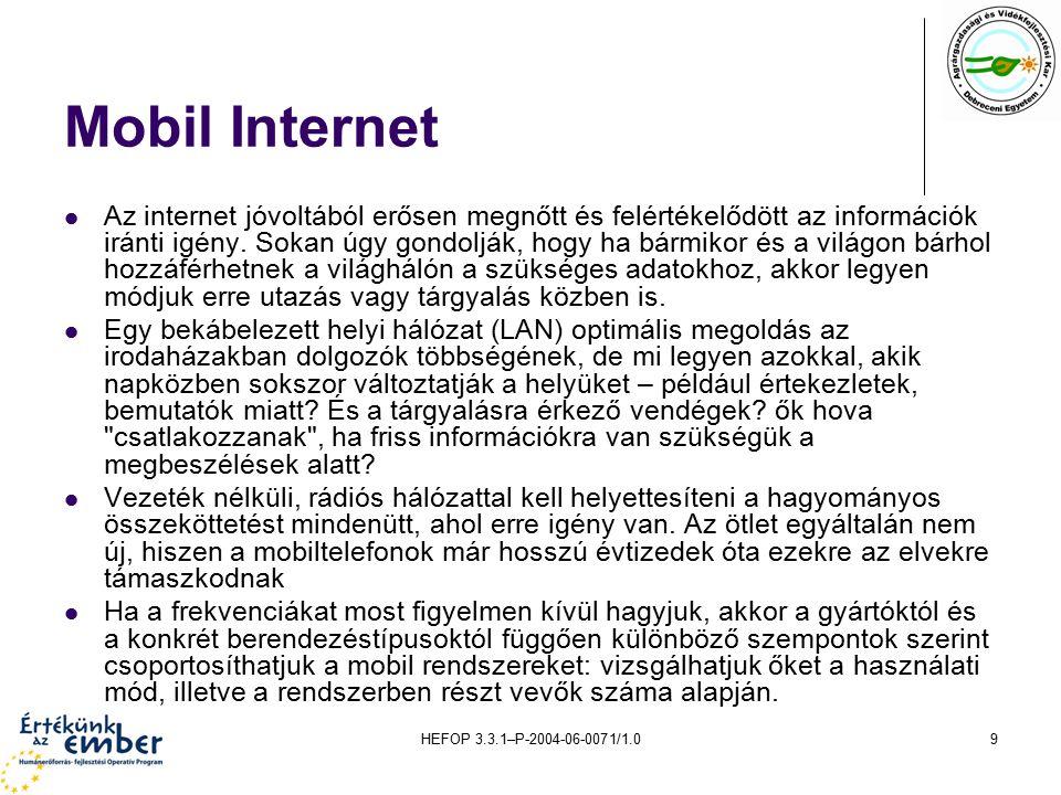 HEFOP 3.3.1–P-2004-06-0071/1.09 Mobil Internet Az internet jóvoltából erősen megnőtt és felértékelődött az információk iránti igény.