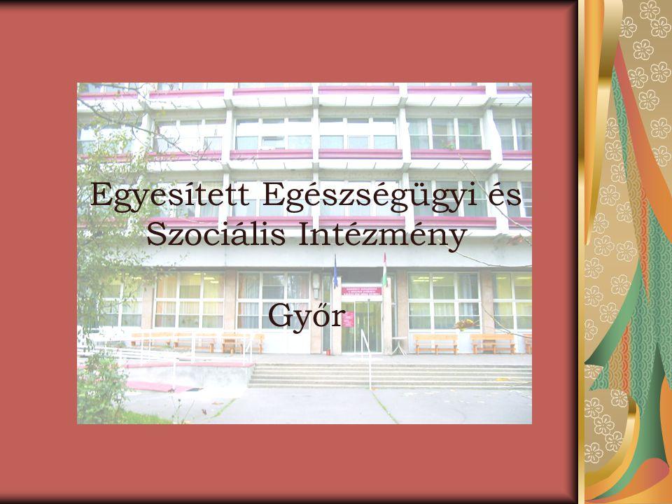 Intézményünk felépítése Az Intézmény napjainkban -Területi Gondozó Szolgálatot - Idősek Otthonait -Fogyatékossággal Élők Átmeneti és Napközi Otthonát magába foglaló intézmény, amely ellátja a város idősgondozásával összefüggő szociális alapszolgáltatási és szakellátási feladatokat.