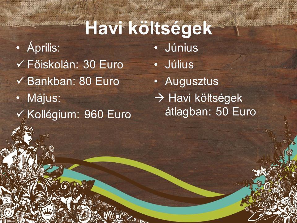 Havi költségek Április: Főiskolán: 30 Euro Bankban: 80 Euro Május: Kollégium: 960 Euro Június Július Augusztus  Havi költségek átlagban: 50 Euro