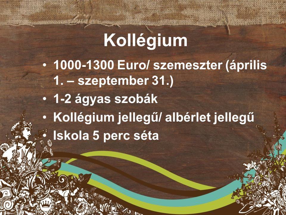Kollégium 1000-1300 Euro/ szemeszter (április 1.