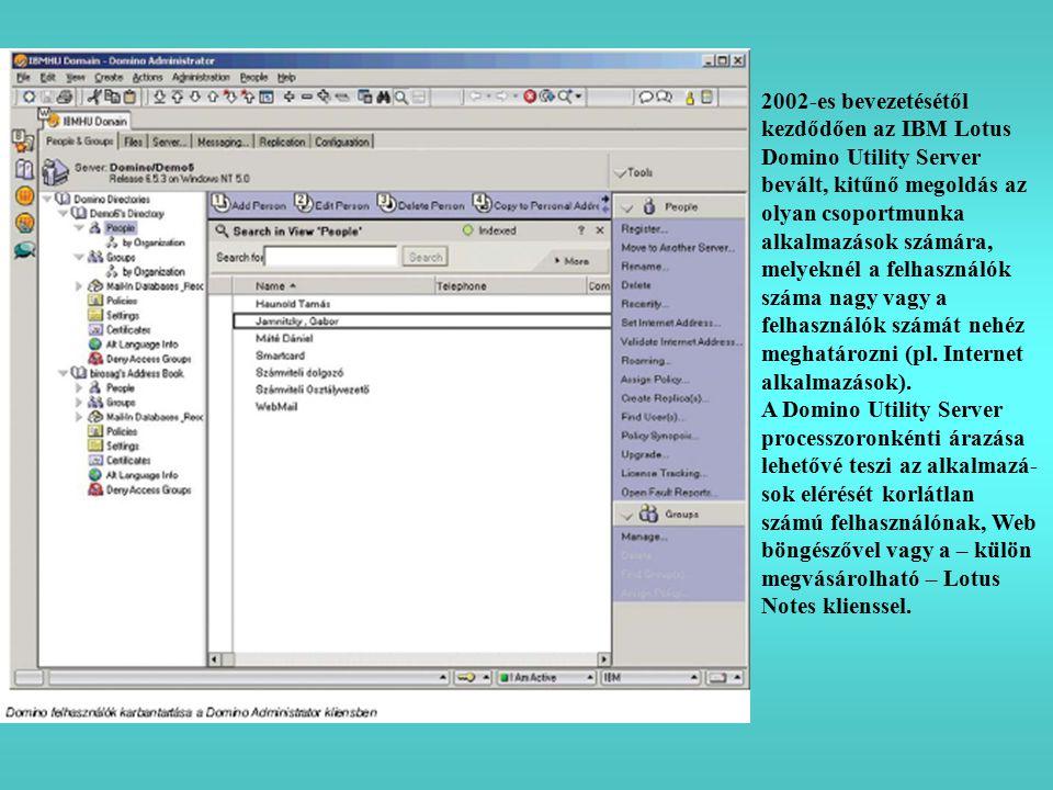2002-es bevezetésétől kezdődően az IBM Lotus Domino Utility Server bevált, kitűnő megoldás az olyan csoportmunka alkalmazások számára, melyeknél a felhasználók száma nagy vagy a felhasználók számát nehéz meghatározni (pl.