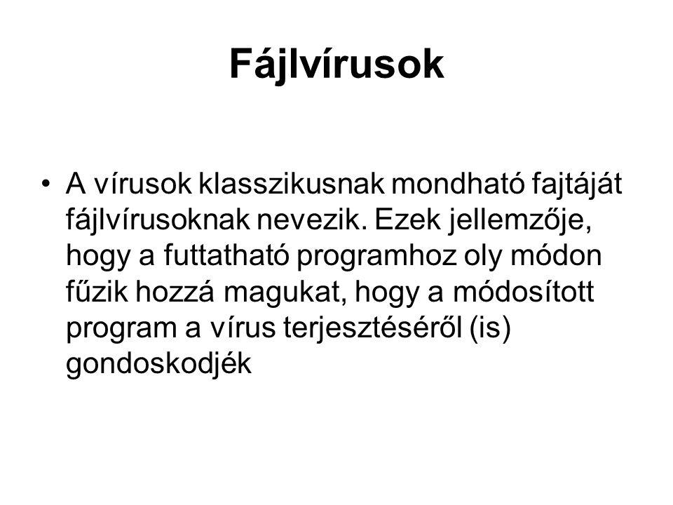 Fájlvírusok A vírusok klasszikusnak mondható fajtáját fájlvírusoknak nevezik. Ezek jellemzője, hogy a futtatható programhoz oly módon fűzik hozzá magu