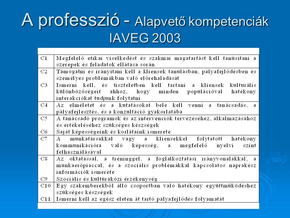 A professzió - Alapvető kompetenciák IAVEG 2003