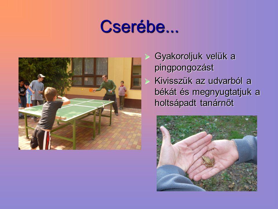 Cserébe...  Gyakoroljuk velük a pingpongozást  Kivisszük az udvarból a békát és megnyugtatjuk a holtsápadt tanárnőt