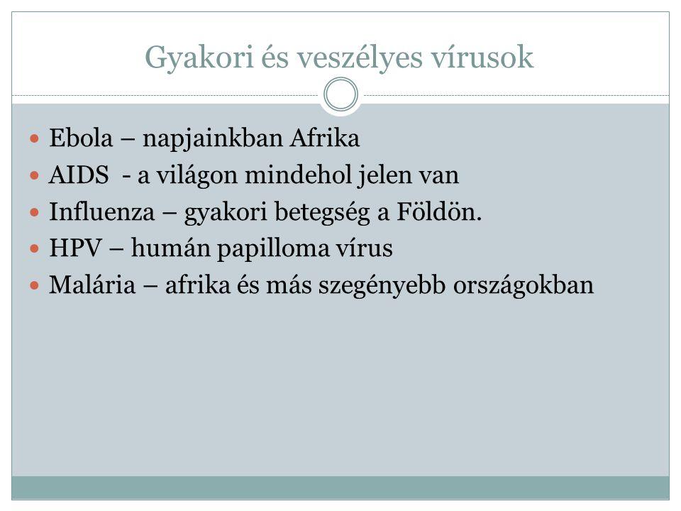 Gyakori és veszélyes vírusok Ebola – napjainkban Afrika AIDS - a világon mindehol jelen van Influenza – gyakori betegség a Földön.