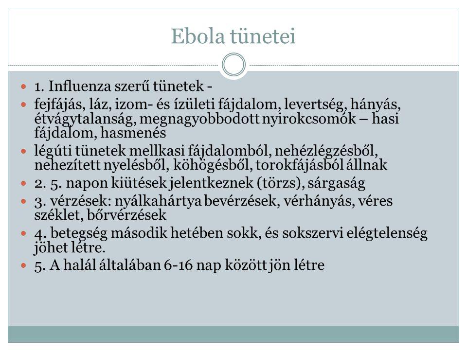 Ebola megelőzése: A betegségnek oki terápiája jelenleg nincs.