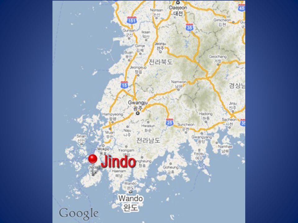 Mózes csak egyszer tudta kettéválasztani a tengert. Koreában ez évente nem is egyszer megtörténik. Jindo szigete a harmadik legnagyobb sziget Dél-Kore