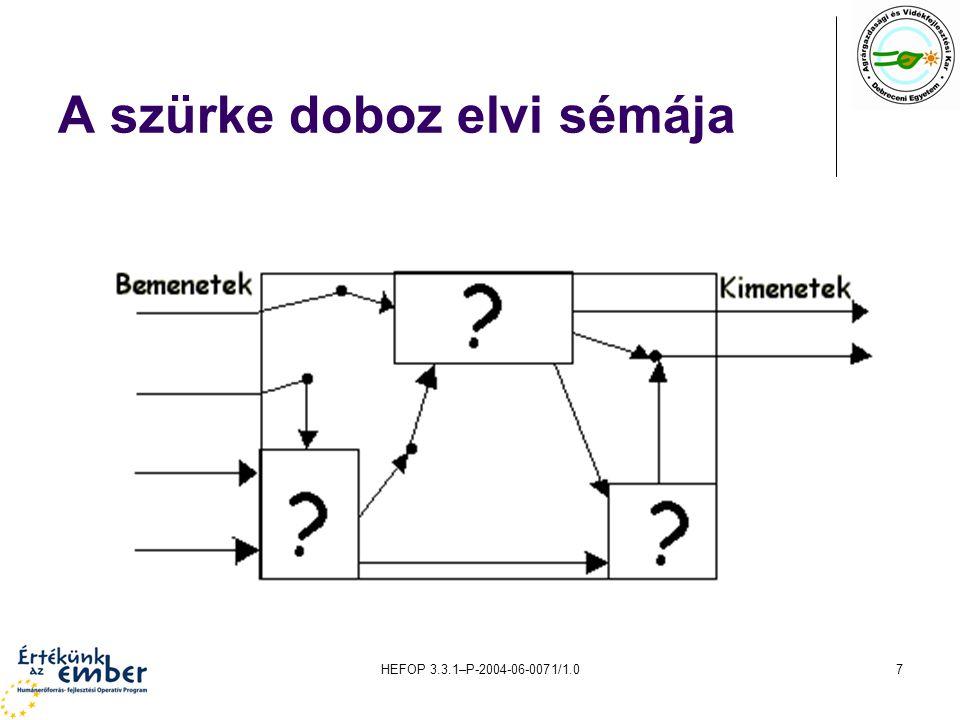 HEFOP 3.3.1–P-2004-06-0071/1.07 A szürke doboz elvi sémája