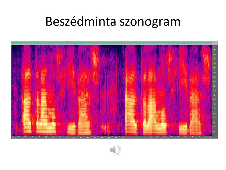 Példák nyelvekre Beszédnyelv hallás – beszédképző szervek Jelnyelv látás – kéz, mimika, szájmozgás Siketvak jelnyelv szenzomotoros érzékelés Braille tapintás – kéz, írótábla Síkírás látás – kéz, toll, számítógép Morze hallás – kéz, billentyű