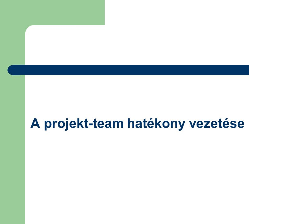A projekt-team hatékony vezetése