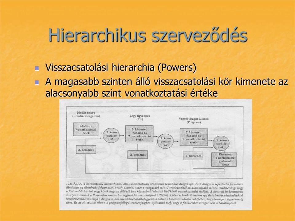 Hierarchikus szerveződés Visszacsatolási hierarchia (Powers) Visszacsatolási hierarchia (Powers) A magasabb szinten álló visszacsatolási kör kimenete