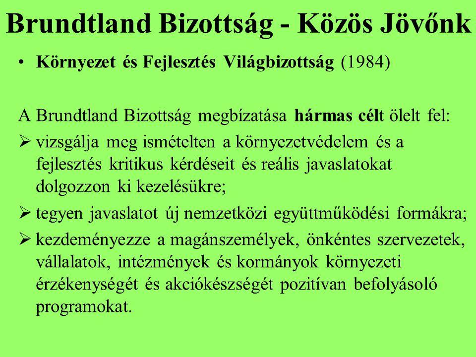 Brundtland Bizottság - Közös Jövőnk Környezet és Fejlesztés Világbizottság (1984) A Brundtland Bizottság megbízatása hármas célt ölelt fel:  vizsgálja meg ismételten a környezetvédelem és a fejlesztés kritikus kérdéseit és reális javaslatokat dolgozzon ki kezelésükre;  tegyen javaslatot új nemzetközi együttműködési formákra;  kezdeményezze a magánszemélyek, önkéntes szervezetek, vállalatok, intézmények és kormányok környezeti érzékenységét és akciókészségét pozitívan befolyásoló programokat.