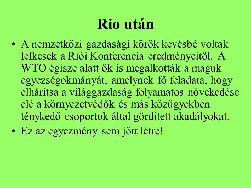 Rio után A nemzetközi gazdasági körök kevésbé voltak lelkesek a Riói Konferencia eredményeitől.