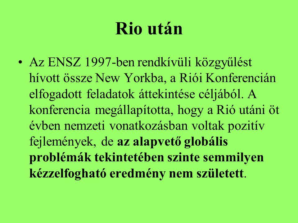 Rio után Az ENSZ 1997-ben rendkívüli közgyűlést hívott össze New Yorkba, a Riói Konferencián elfogadott feladatok áttekintése céljából.