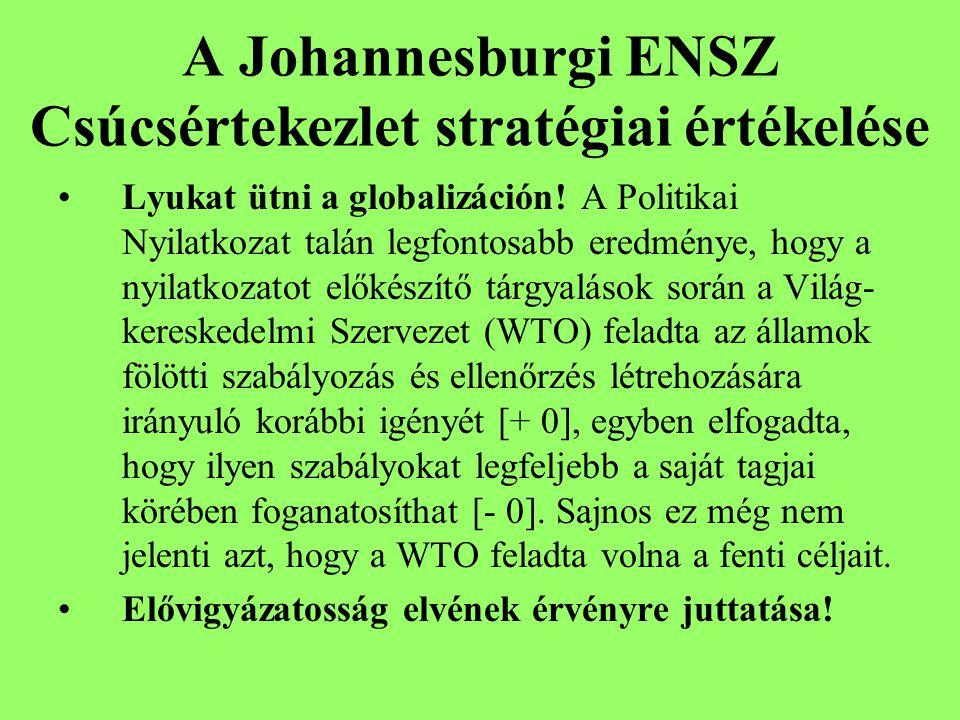 A Johannesburgi ENSZ Csúcsértekezlet stratégiai értékelése Lyukat ütni a globalizáción.