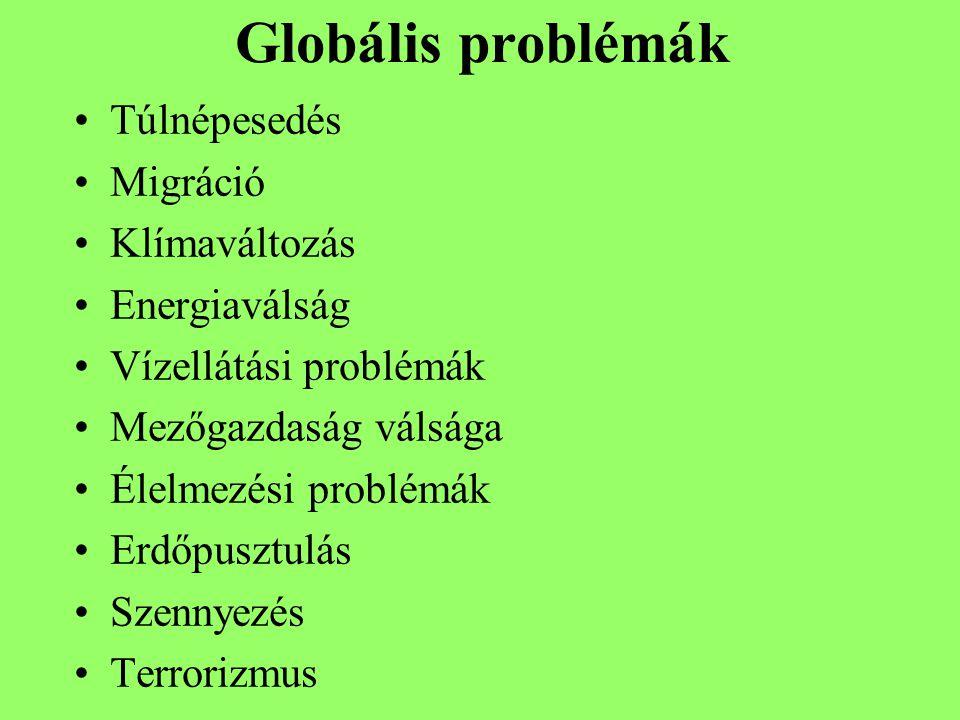 Globális problémák Túlnépesedés Migráció Klímaváltozás Energiaválság Vízellátási problémák Mezőgazdaság válsága Élelmezési problémák Erdőpusztulás Szennyezés Terrorizmus