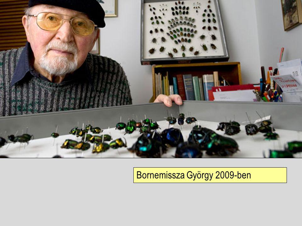 Bornemissza György 2009-ben