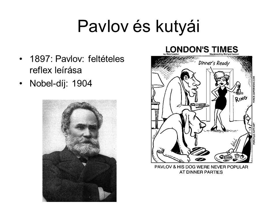 Broca és Ramon y Cajal 1861: Broca: speciális funkciók – speciális agyterület (pl.: nyelv) 1889: Ramon y Cajal: neuronális doktrina