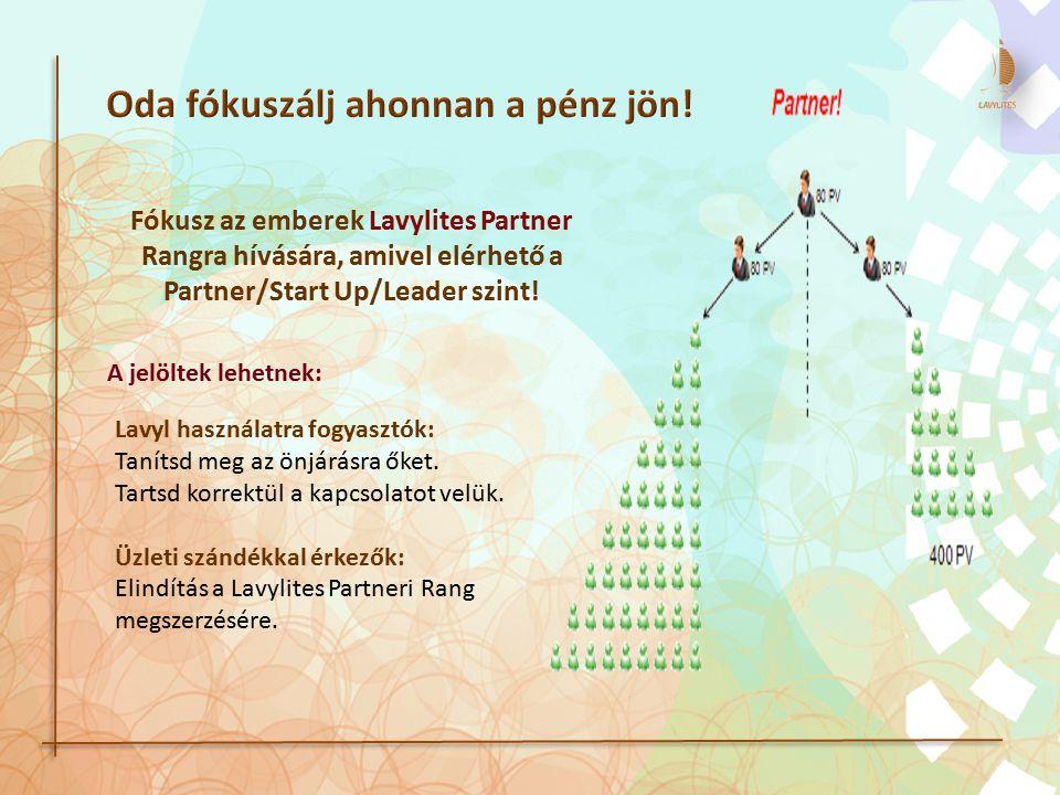 Fókusz az emberek Lavylites Partner Rangra hívására, amivel elérhető a Partner/Start Up/Leader szint! A jelöltek lehetnek: Lavyl használatra fogyasztó