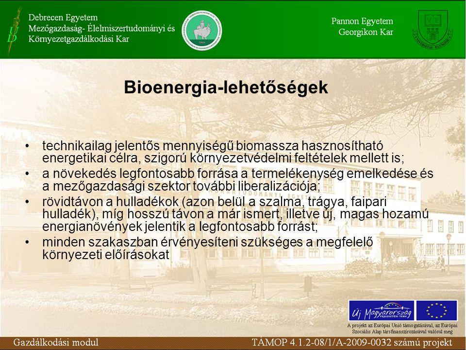 Bioenergia-lehetőségek technikailag jelentős mennyiségű biomassza hasznosítható energetikai célra, szigorú környezetvédelmi feltételek mellett is; a növekedés legfontosabb forrása a termelékenység emelkedése és a mezőgazdasági szektor további liberalizációja; rövidtávon a hulladékok (azon belül a szalma, trágya, faipari hulladék), míg hosszú távon a már ismert, illetve új, magas hozamú energianövények jelentik a legfontosabb forrást; minden szakaszban érvényesíteni szükséges a megfelelő környezeti előírásokat